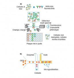 Fig1. a) FACS : les cellules étudiées sont marquées grâce à un anticorps portant un fluorochrome. Les cellules sont individualisées en gouttelettes qui passent devant un détecteur multi spectral pour identification et phénotypage, puis sont triées selon la charge qu'elles acquièrent au travers d'un champ électrique. b) Micro fluidique : système de micro canaux pour enfermer dans l'huile des microgouttelettes contenant une GEM, une cellule et tous les réactifs pour l'extraction et d'amplification des nucléotides.